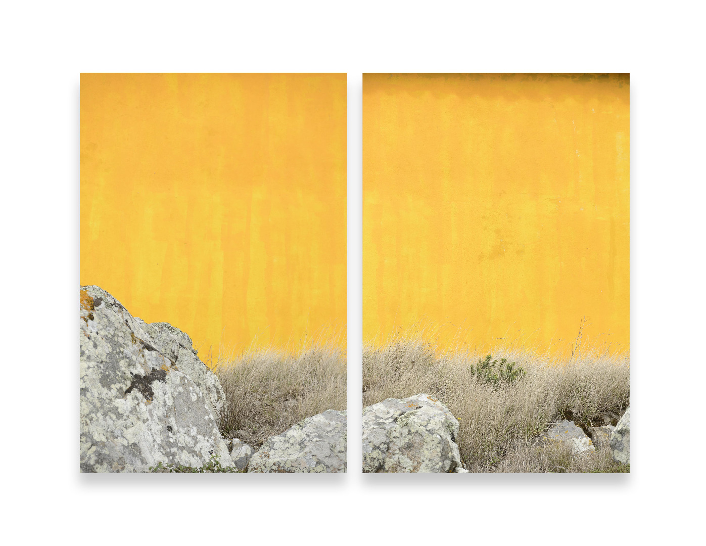 Johannes Kersting, Golden Yellow, 2015, Pigment Print, je 120 x 80 cm © the artist